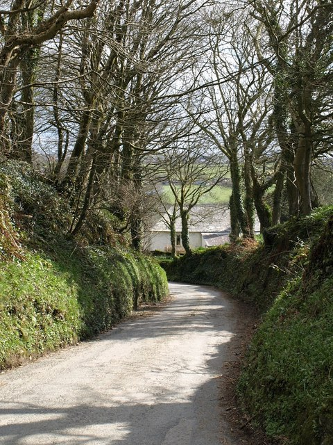 Lane at Hendra