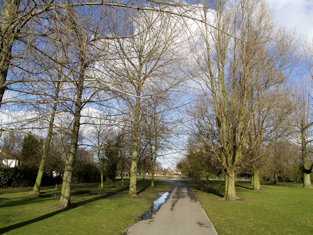 Trees in East Park