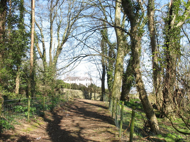 The track to the ruined St Gwenllwyfo Church and Bron Fuches farmhouse