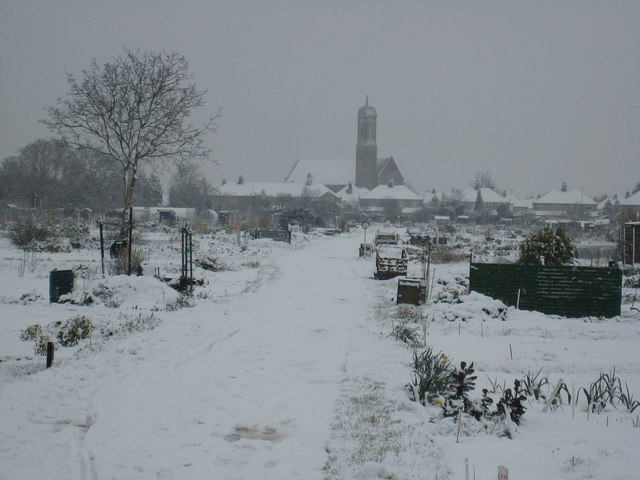 Chesterton Allotments under snow