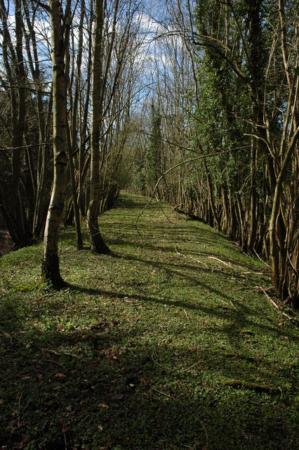 Track bed of former Wye Valley Railway