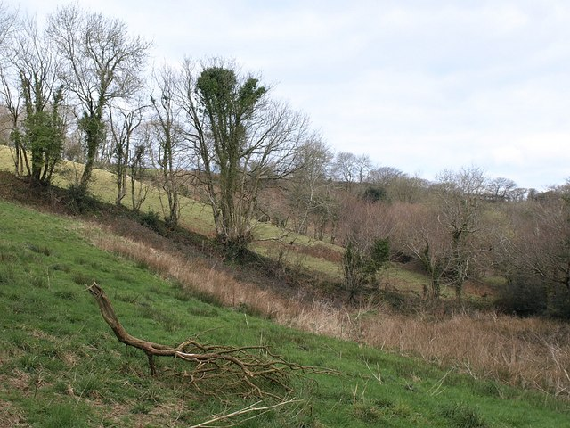 Field by the River Allen