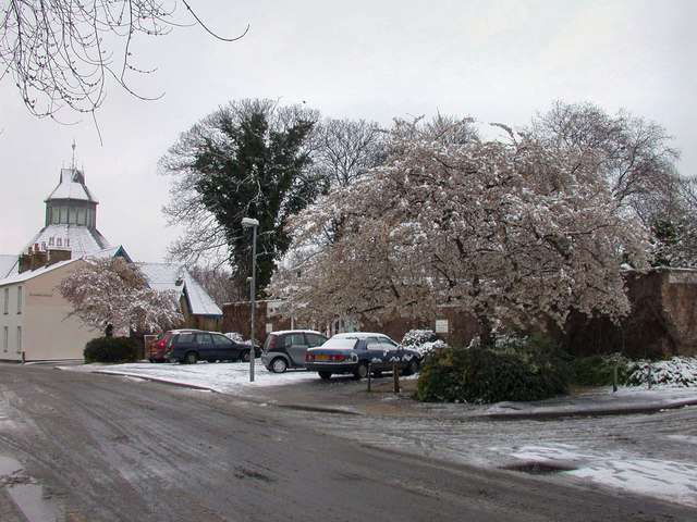 Cherry Trees in Easter snow