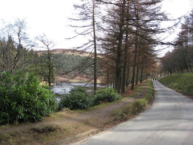 Road View from Derwent Reservoir Inlet