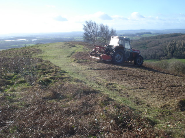 Scrub clearance on Chase End Hill