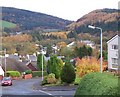 NS2071 : Autumn in Inverkip by Thomas Nugent