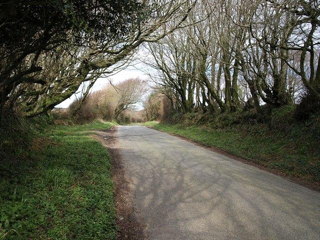 Lane north of Trefrew