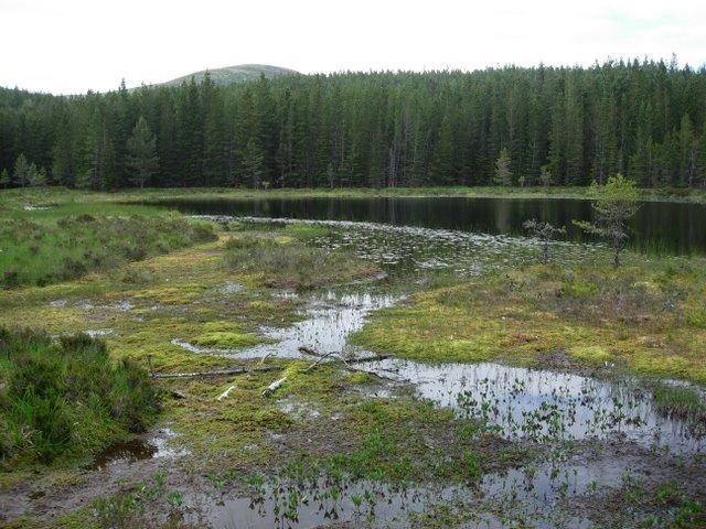 Loch na Gabhlach