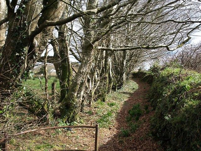 Private path off Trefrew Road