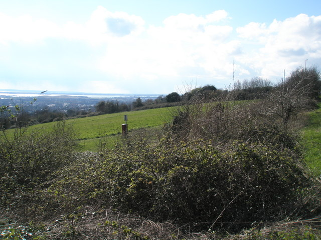 Common land on Portsdown Road as seen from Farlington Avenue