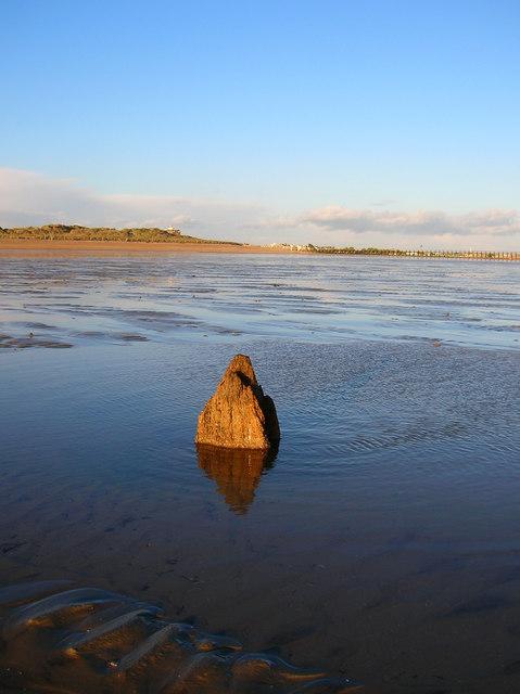 Wooden Stump, West Beach