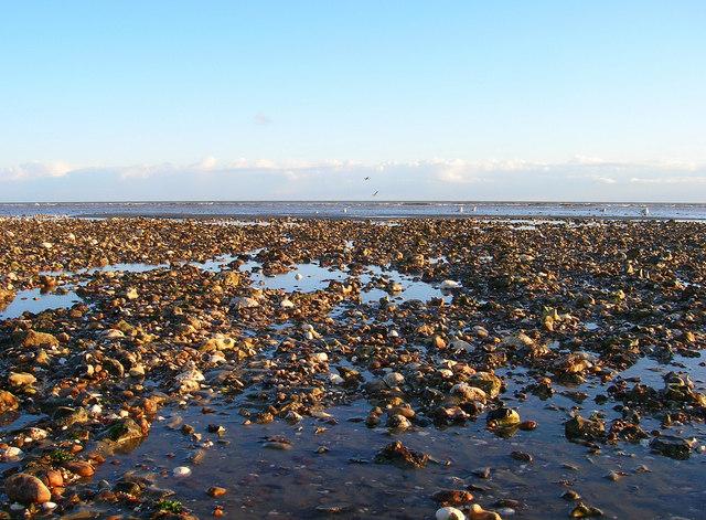 Rocks and Gulls, West Beach