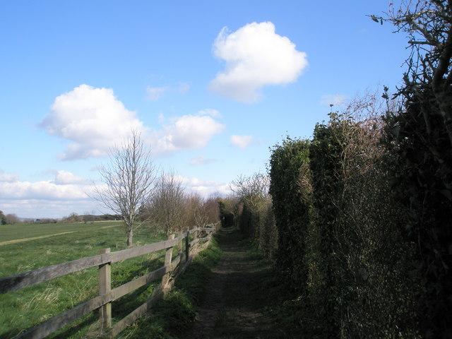 Footpath behind eastern end of Hoylake Road