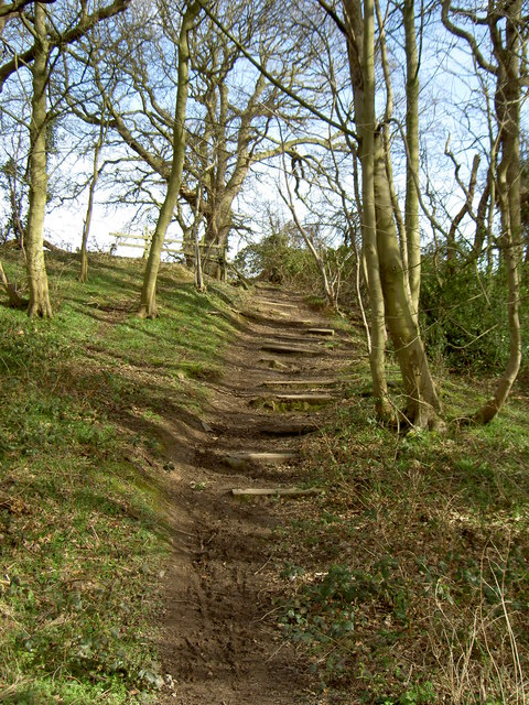 Footpath Steps leading towards Storeton.
