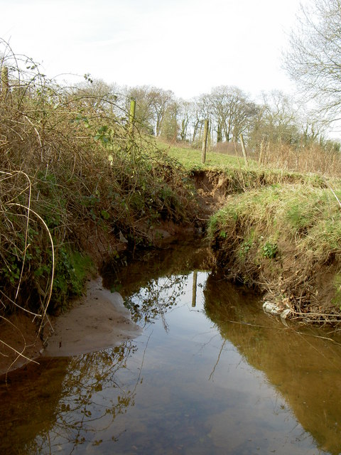 Meander of Prenton Brook.