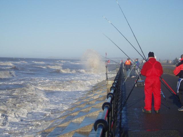 Fishing Near Hall Road