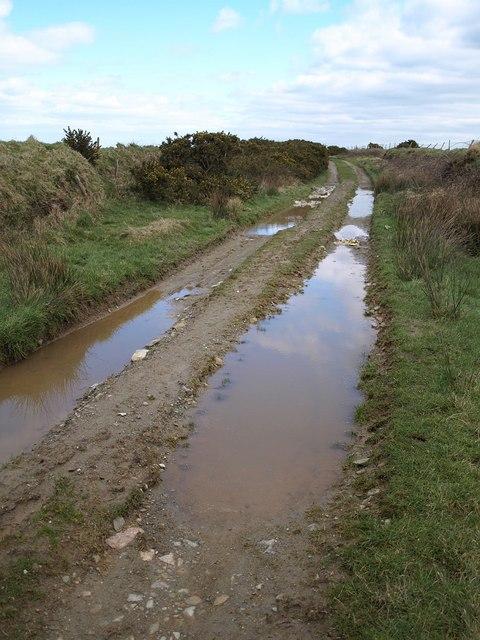 Track to Davidstow Moor
