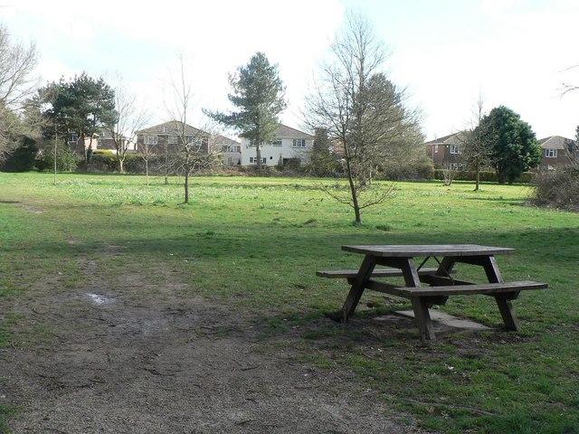 Muscliff: arboretum picnic bench