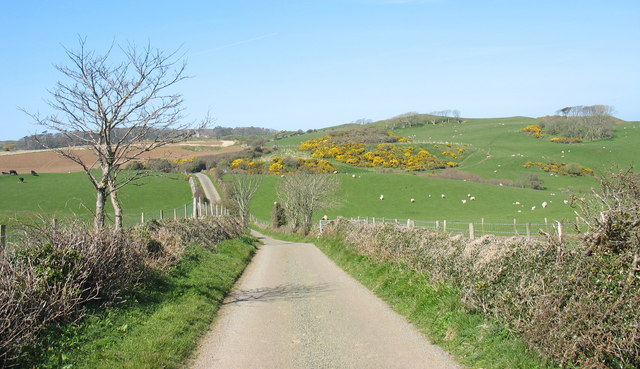 Country road north of Ty Newydd
