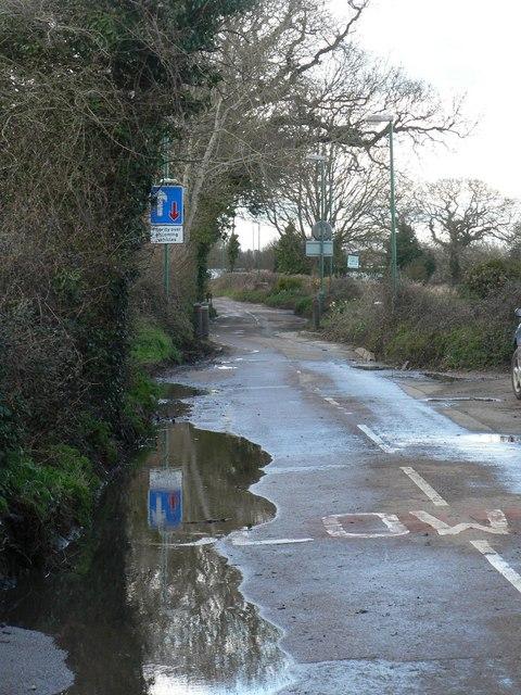 Throop: Muscliffe Lane