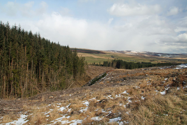 Sidwood Cleugh