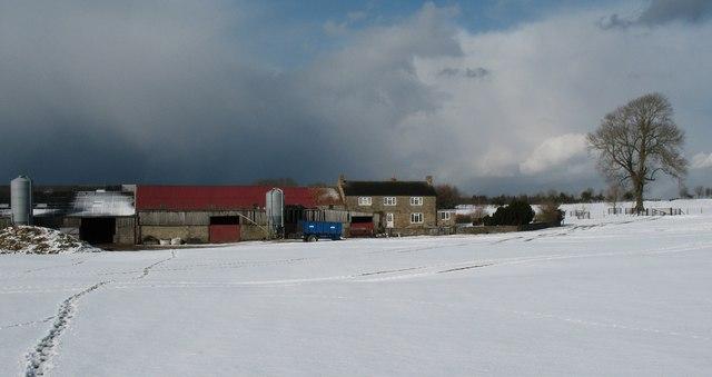 Cam Farm