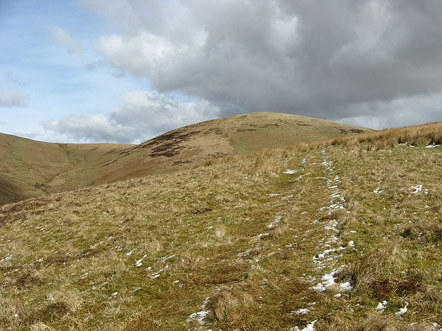 On the west-southwest ridge of Wether Law