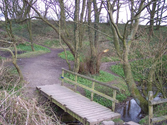 Footbridge on The Goyt