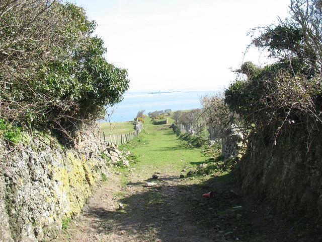 Green lane towards the cliffline from Rhos-mynach farm