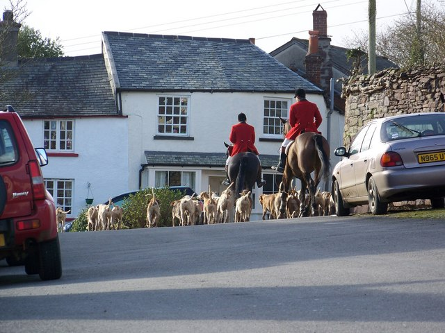 The hunt heading home, North Molton