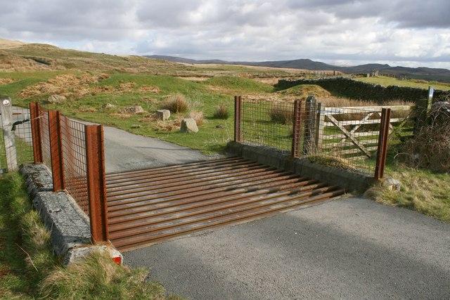 Cattle Grid at Mynydd Maentwrog