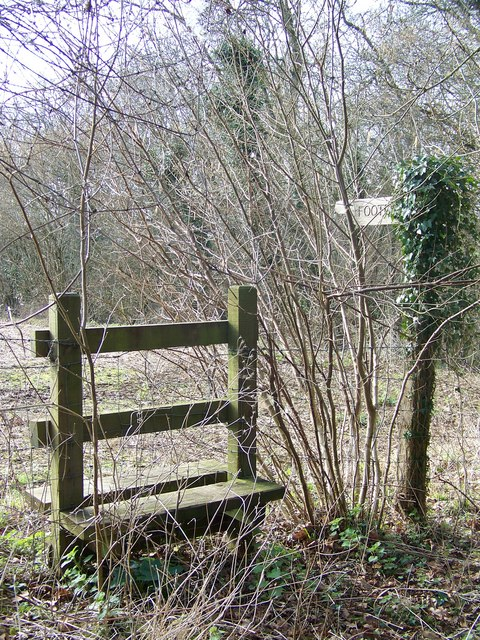 Stile, Knighton Wood