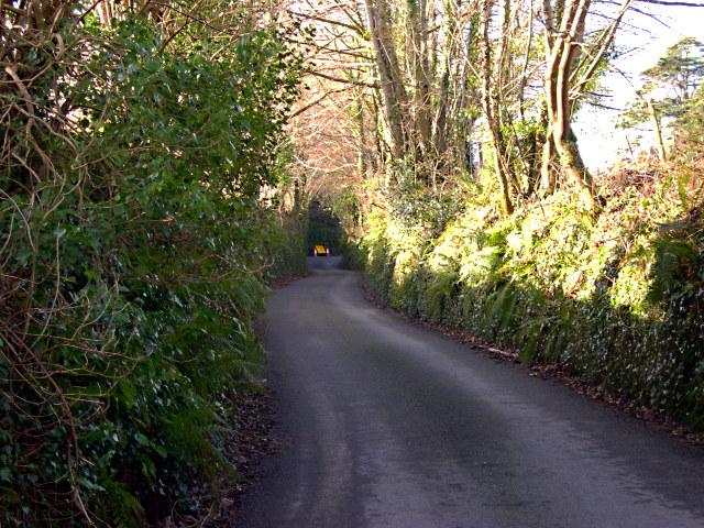 Narrow Lane into Golant