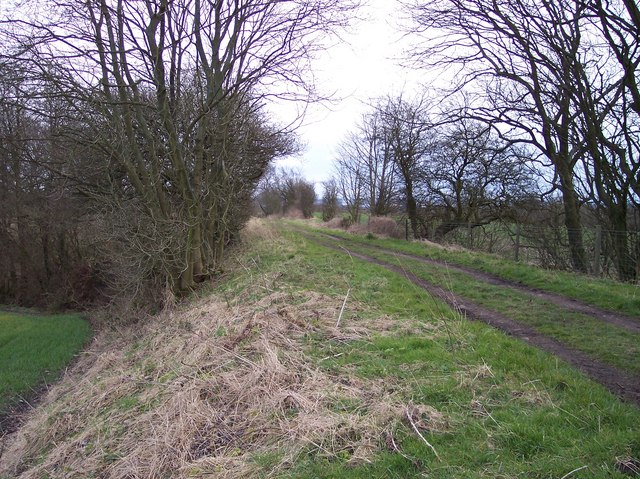 Path on disused Railway Embankment