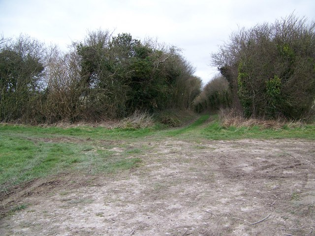 Junction of byways, Hawking Down