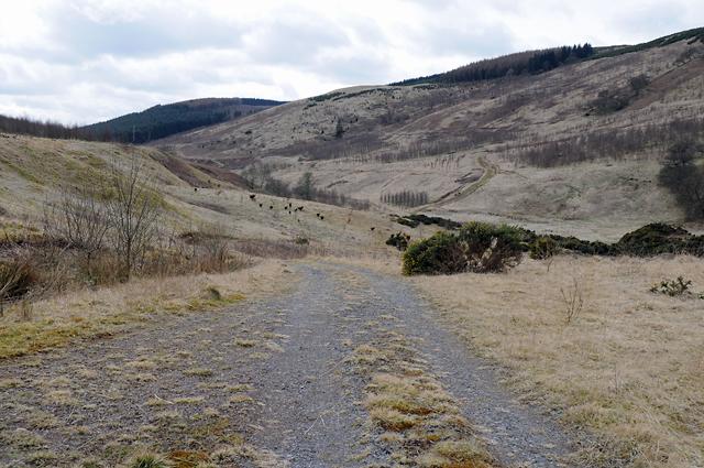 Track to Clow Bridge
