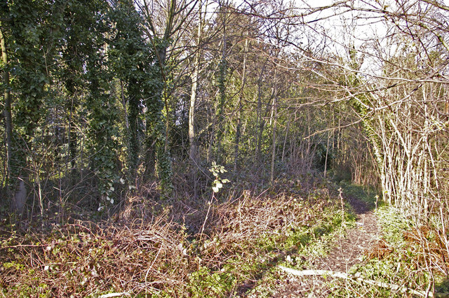 Footpath near Pond in Lakeside, Enfield