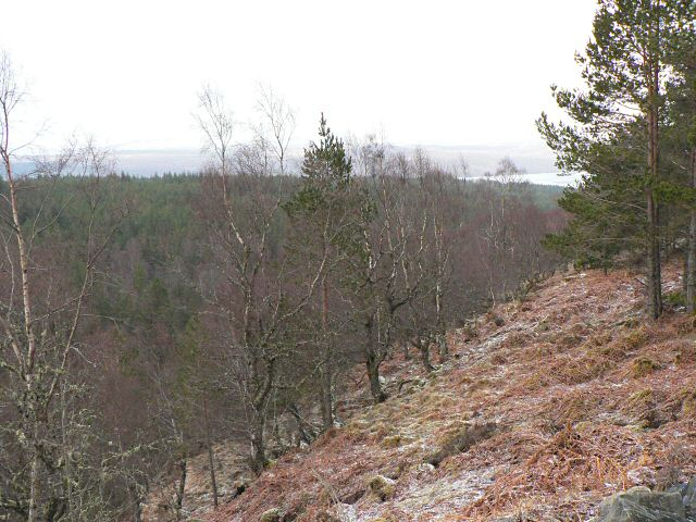 Slope above the Allt na Bogair