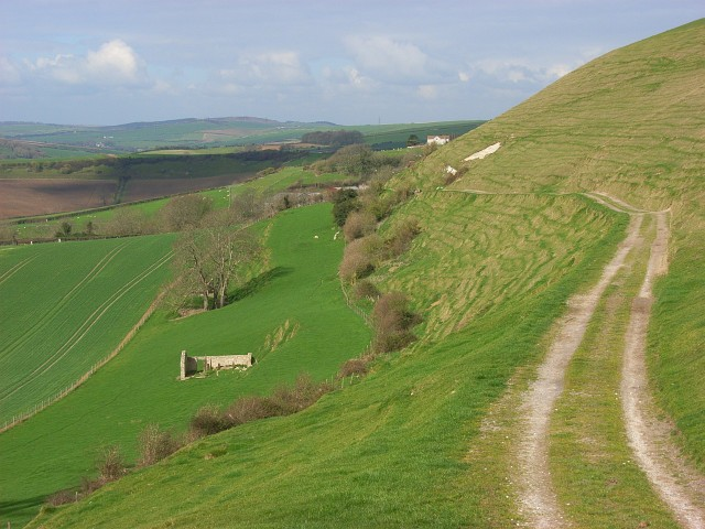 Downland and track, Bincombe
