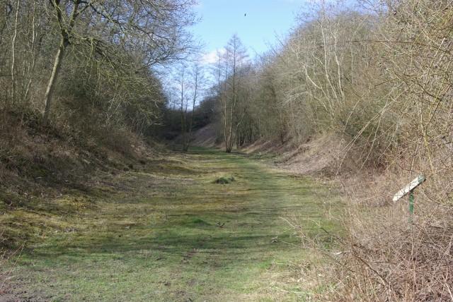 Disused railway cutting, Stockton