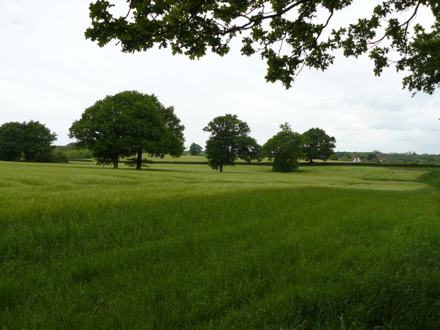 Pollardshill Farm from across fields