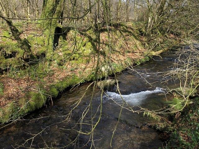 Tregoodwell Brook