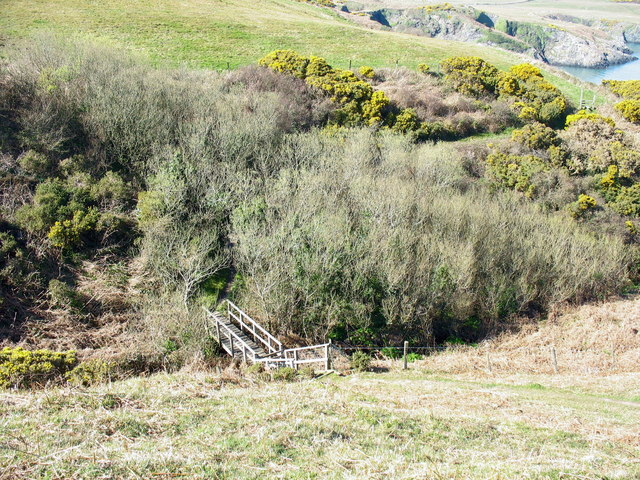 Coastal path footbridge over incised valley above Freshwater Bay