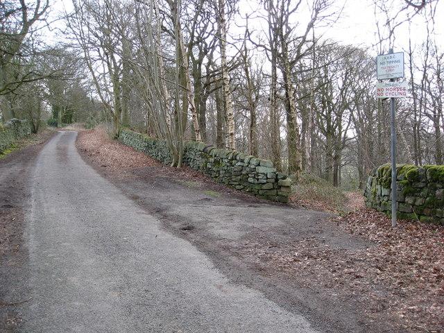 Lea - Long Lane
