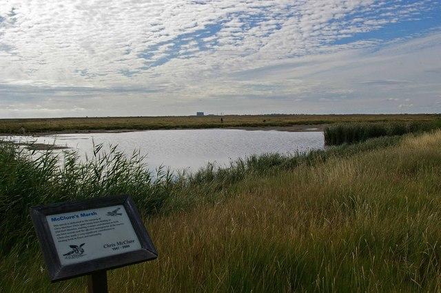 McClure's Marsh