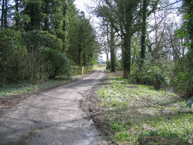 Track past Gwysaney Hall