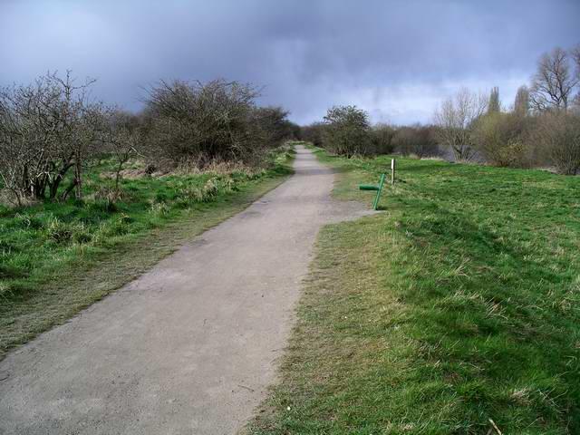 Footpath, Attenborough Nature Reserve