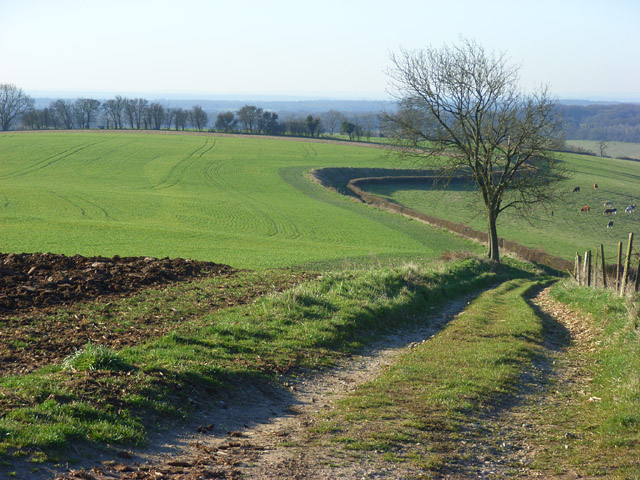 Footpath and farmland, Fawley