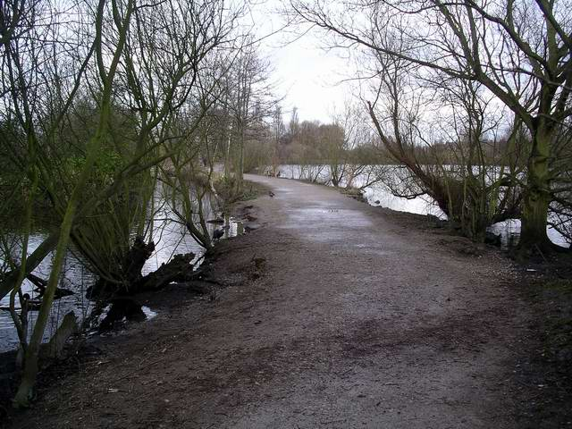 Path, Attenborough Nature Reserve