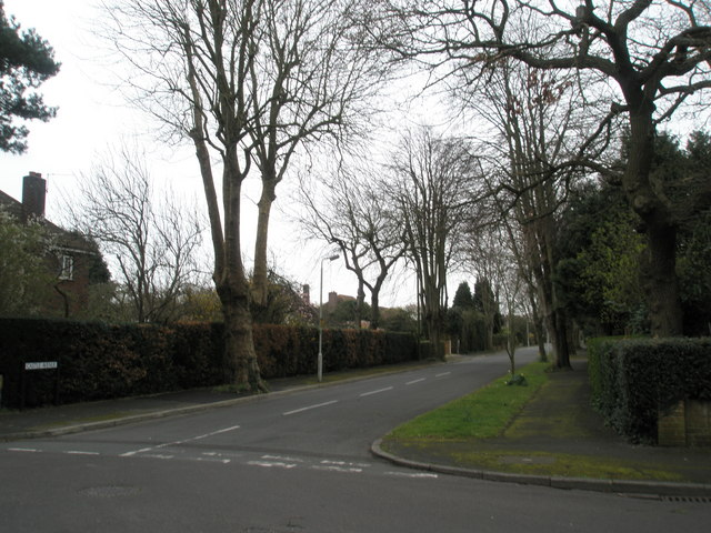 Castle Avenue, Warblington